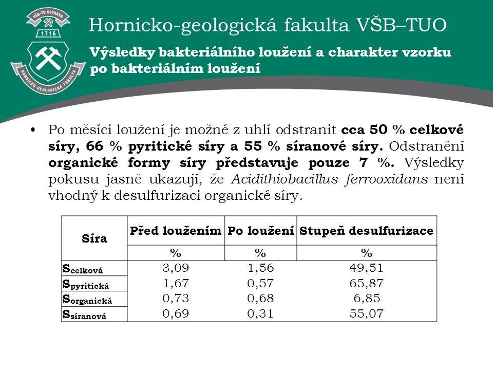 Výsledky bakteriálního loužení a charakter vzorku po bakteriálním loužení