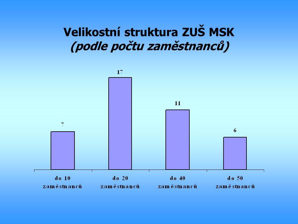 Velikostní struktura ZUŠ MSK (podle počtu zaměstnanců)