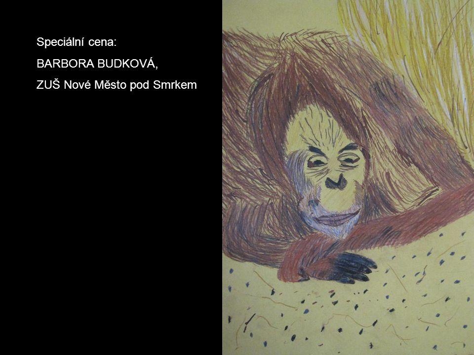 Speciální cena: BARBORA BUDKOVÁ, ZUŠ Nové Město pod Smrkem