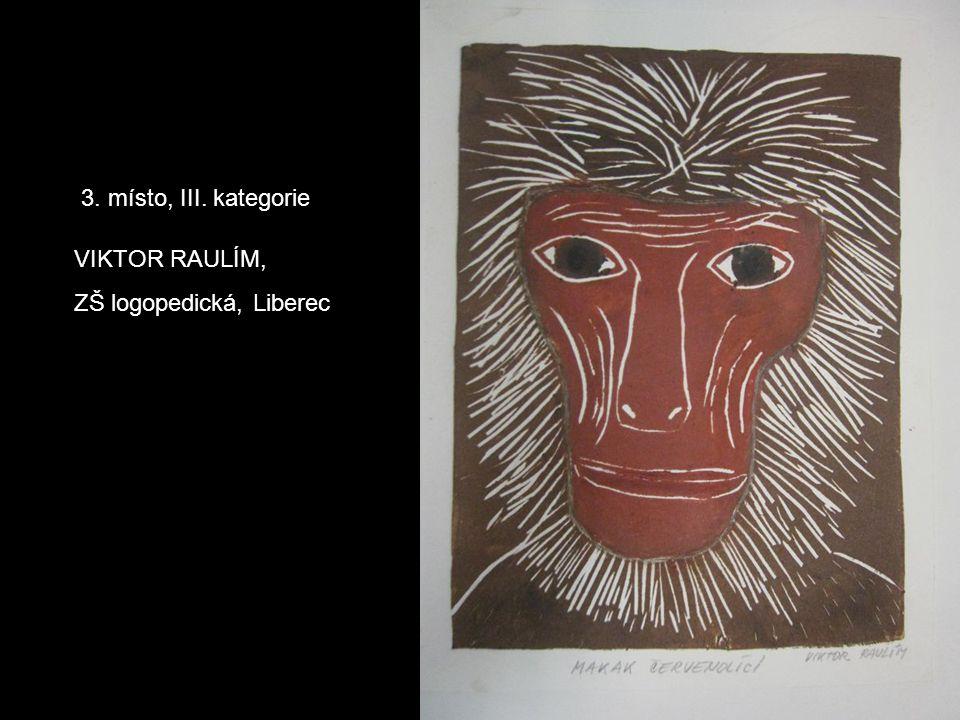 3. místo, III. kategorie VIKTOR RAULÍM, ZŠ logopedická, Liberec