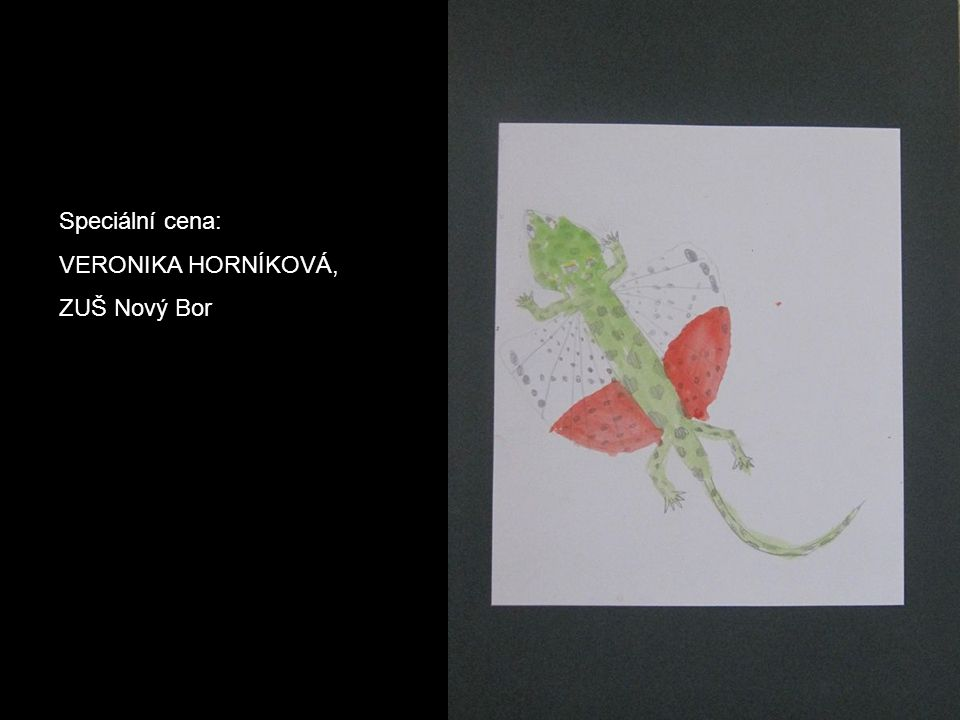 Speciální cena: VERONIKA HORNÍKOVÁ, ZUŠ Nový Bor