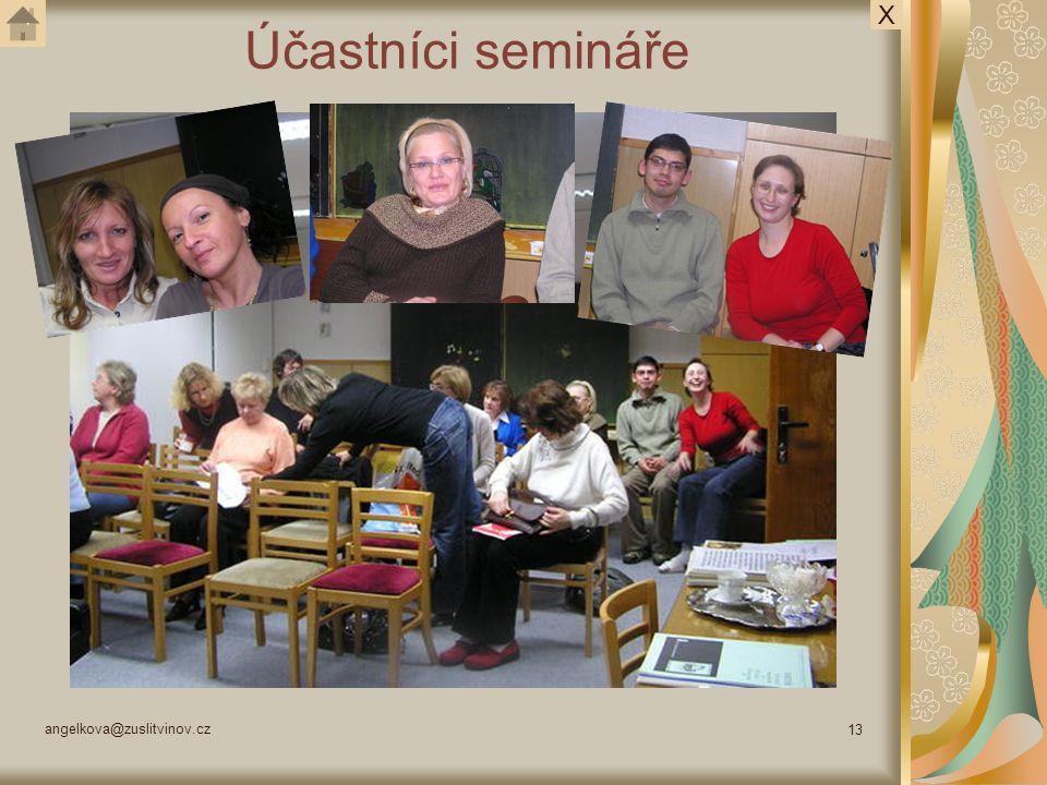 X Účastníci semináře angelkova@zuslitvinov.cz