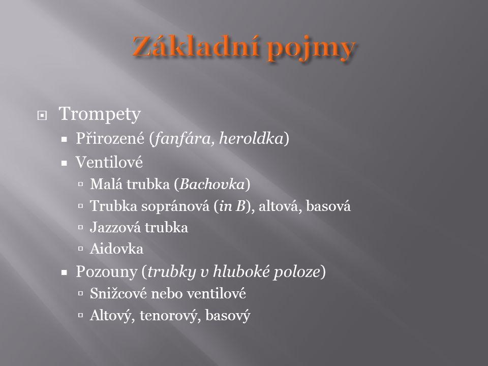 Základní pojmy Trompety Přirozené (fanfára, heroldka) Ventilové