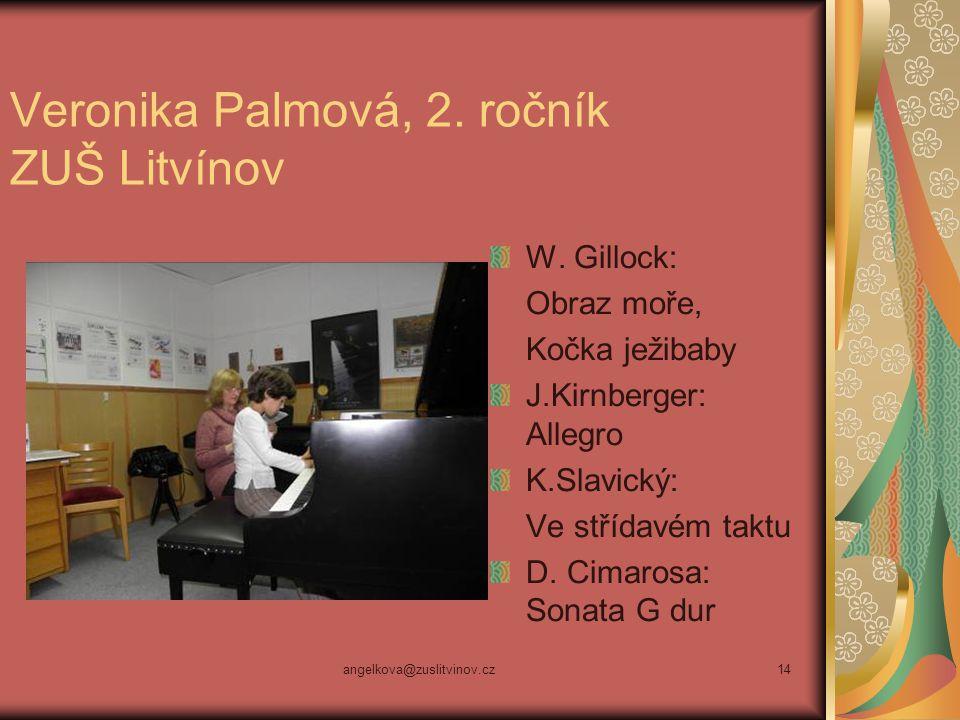 Veronika Palmová, 2. ročník ZUŠ Litvínov