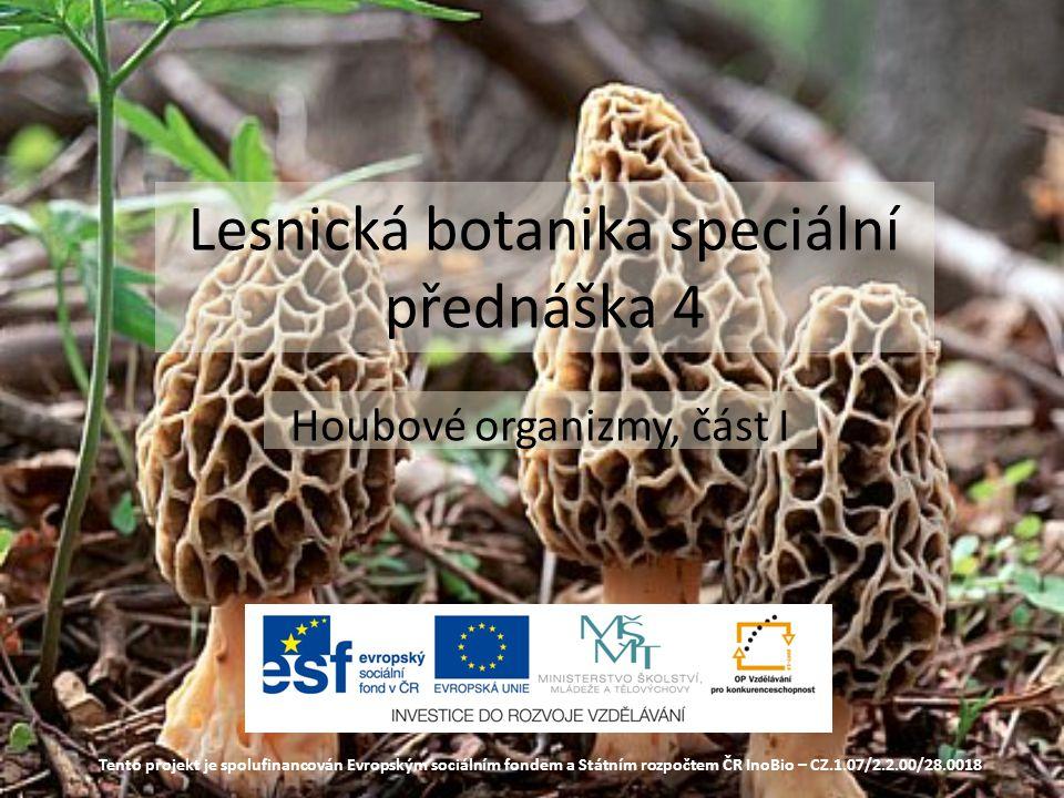 Lesnická botanika speciální přednáška 4