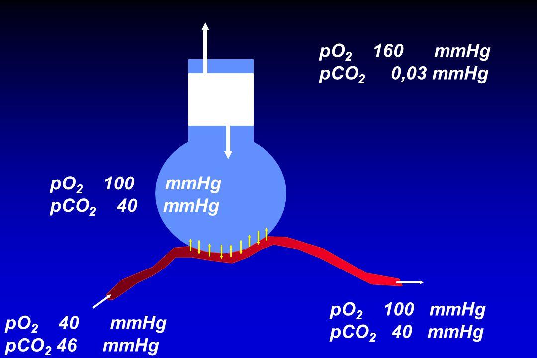 pO2 160 mmHg pCO2 0,03 mmHg. pO2 100 mmHg. pCO2 40 mmHg. pO2 100 mmHg.