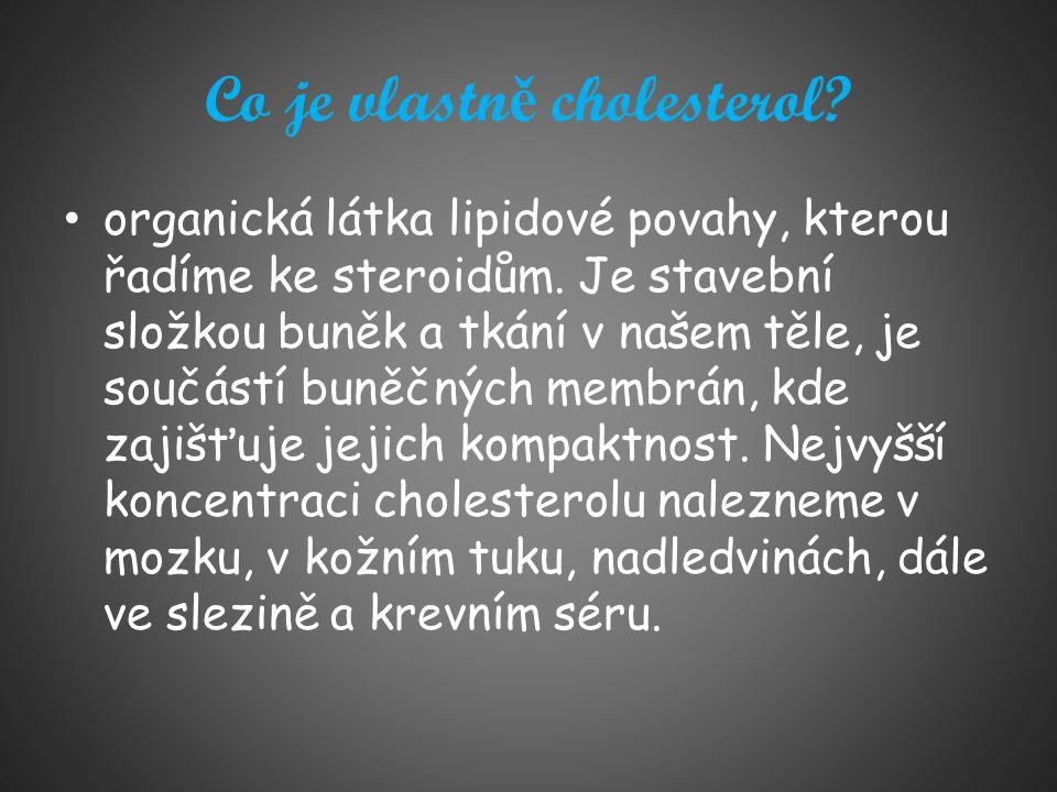 Co je vlastně cholesterol