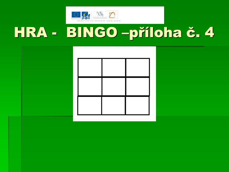 HRA - BINGO –příloha č. 4