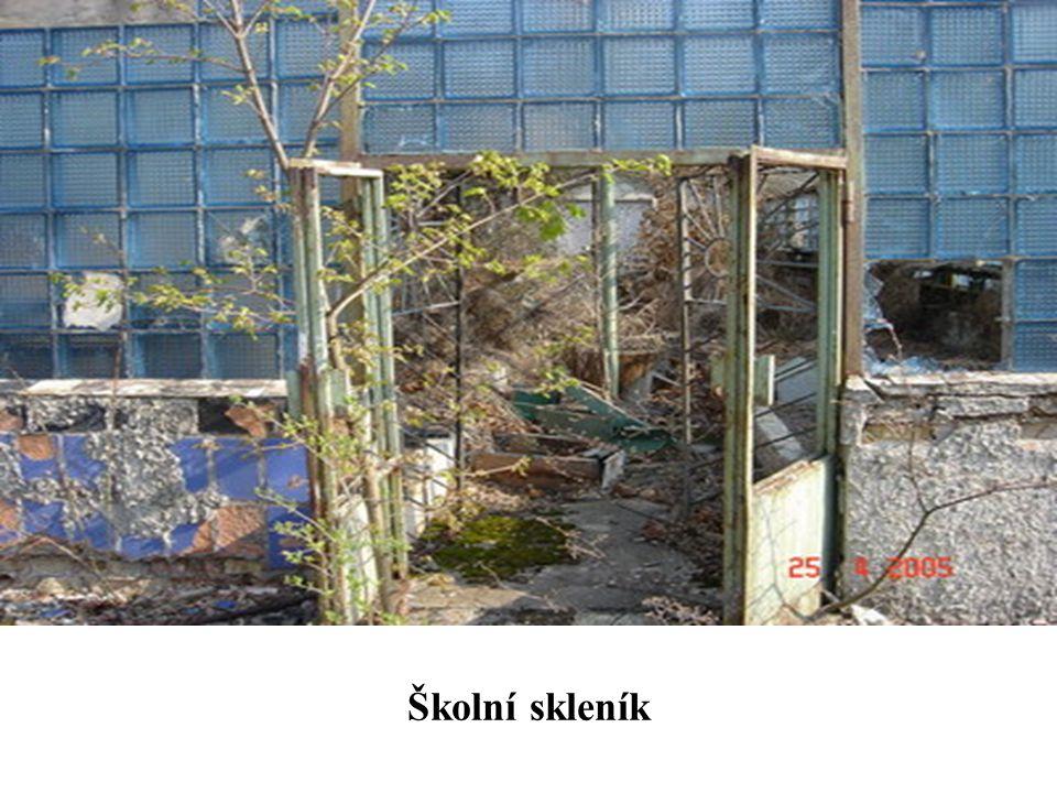 Školní skleník