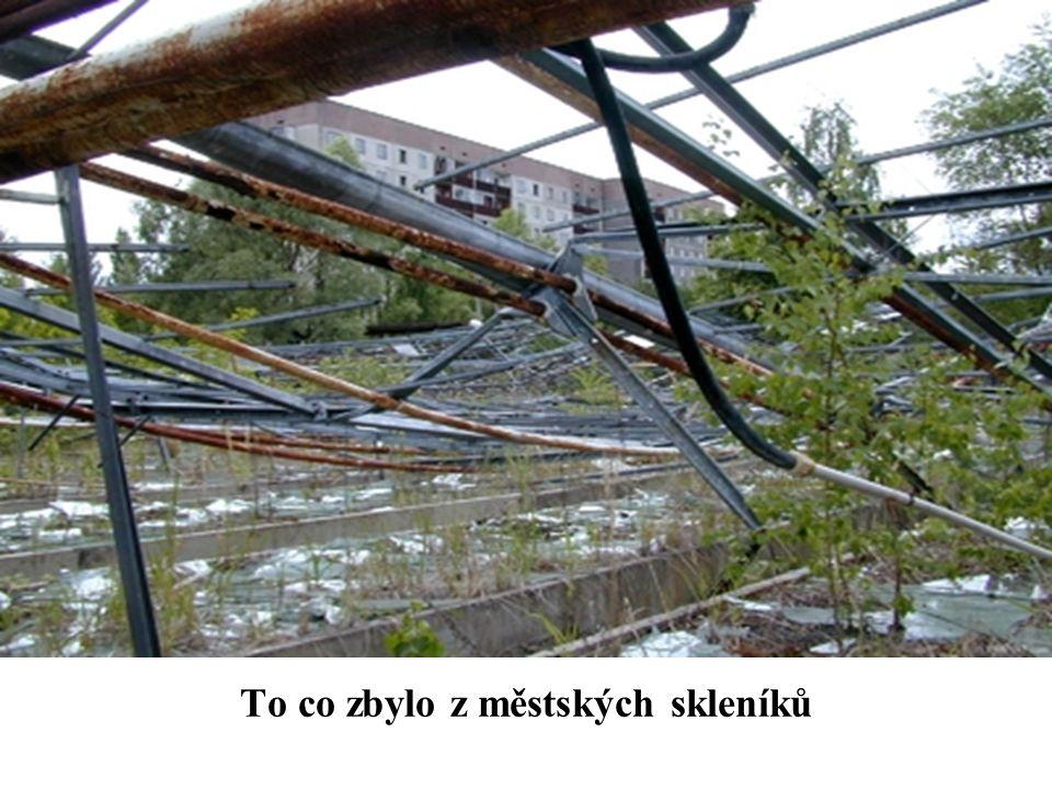 To co zbylo z městských skleníků