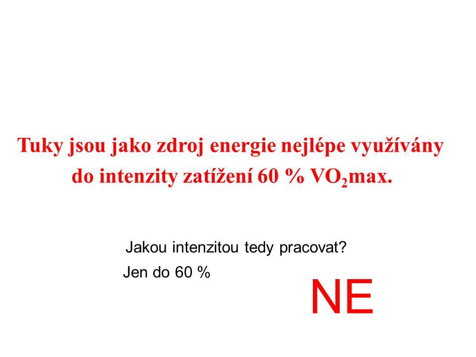 NE Tuky jsou jako zdroj energie nejlépe využívány