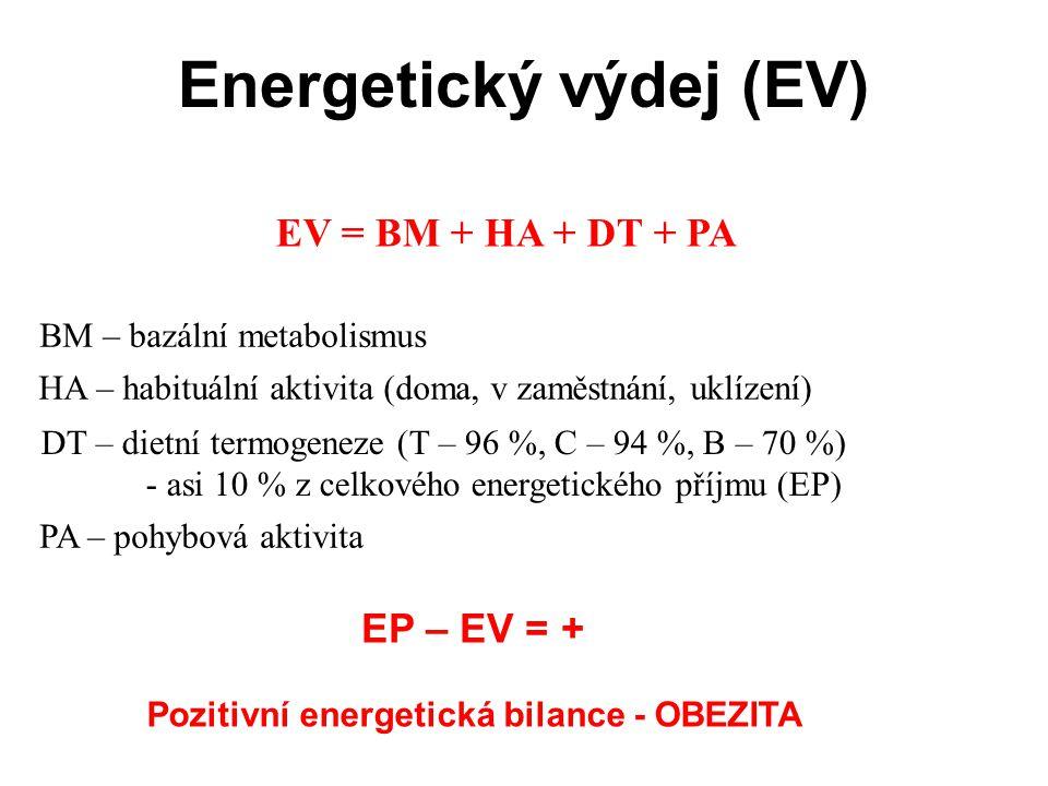 Energetický výdej (EV)