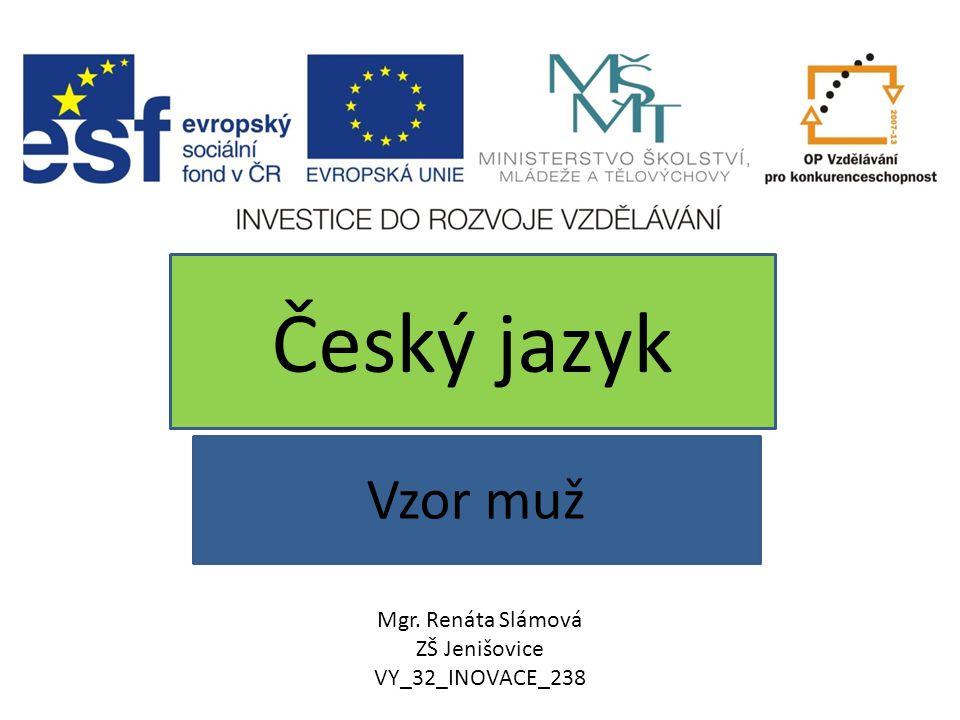Český jazyk Vzor muž Mgr. Renáta Slámová ZŠ Jenišovice