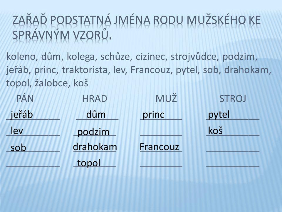 Zařaď podstatná jména rodu mužského ke správným vzorů.