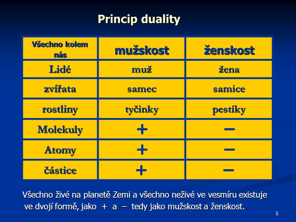 + – + – + – + – Princip duality mužskost ženskost Lidé zvířata