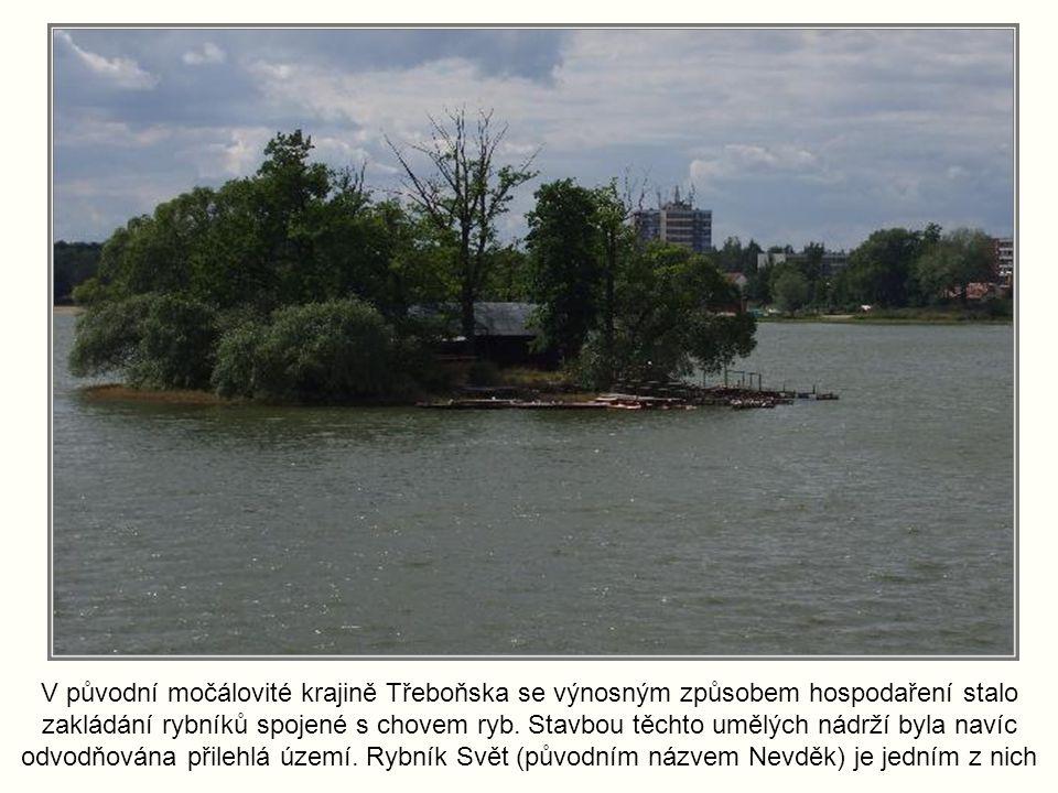 V původní močálovité krajině Třeboňska se výnosným způsobem hospodaření stalo zakládání rybníků spojené s chovem ryb.