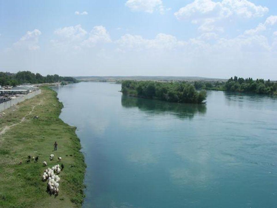 נהר חידקל