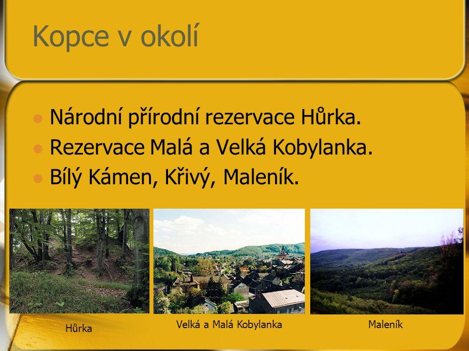 Kopce v okolí Národní přírodní rezervace Hůrka.