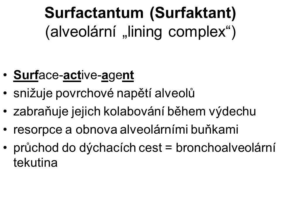 "Surfactantum (Surfaktant) (alveolární ""lining complex )"