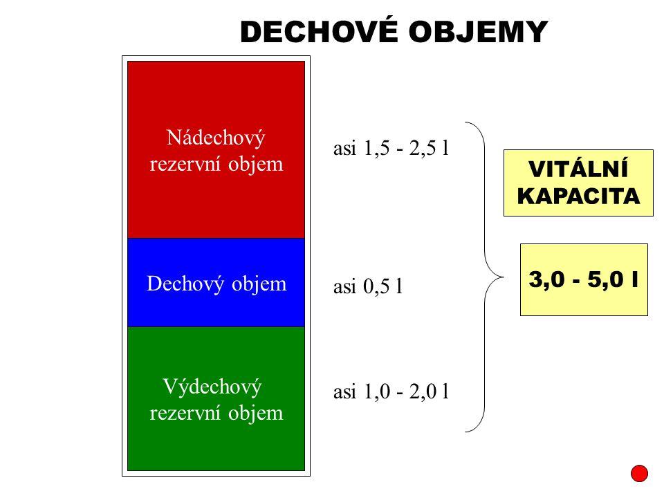 DECHOVÉ OBJEMY Nádechový rezervní objem asi 1,5 - 2,5 l VITÁLNÍ