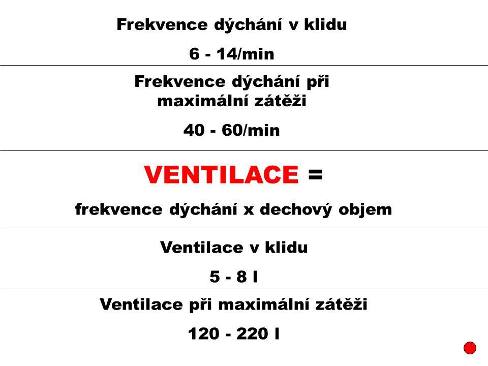 VENTILACE = Frekvence dýchání v klidu 6 - 14/min