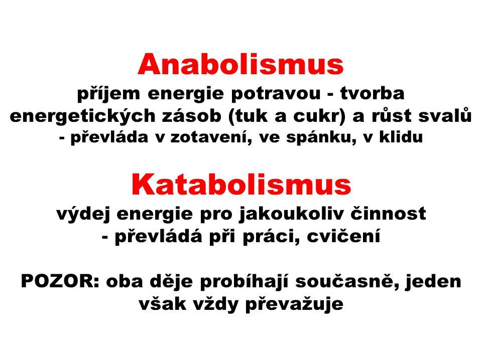 Anabolismus příjem energie potravou - tvorba energetických zásob (tuk a cukr) a růst svalů - převláda v zotavení, ve spánku, v klidu Katabolismus výdej energie pro jakoukoliv činnost - převládá při práci, cvičení POZOR: oba děje probíhají současně, jeden však vždy převažuje