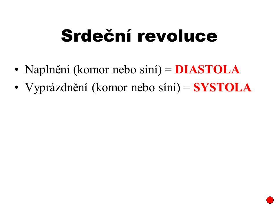 Srdeční revoluce Naplnění (komor nebo síní) = DIASTOLA