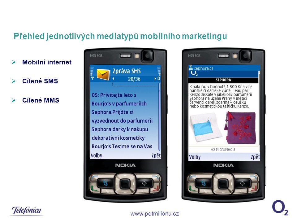 Přehled jednotlivých mediatypů mobilního marketingu