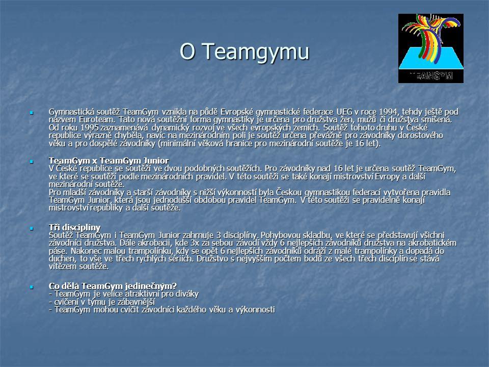 O Teamgymu