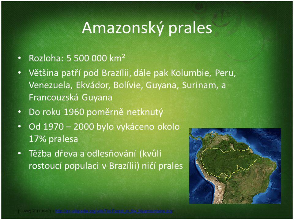 Amazonský prales Rozloha: 5 500 000 km2