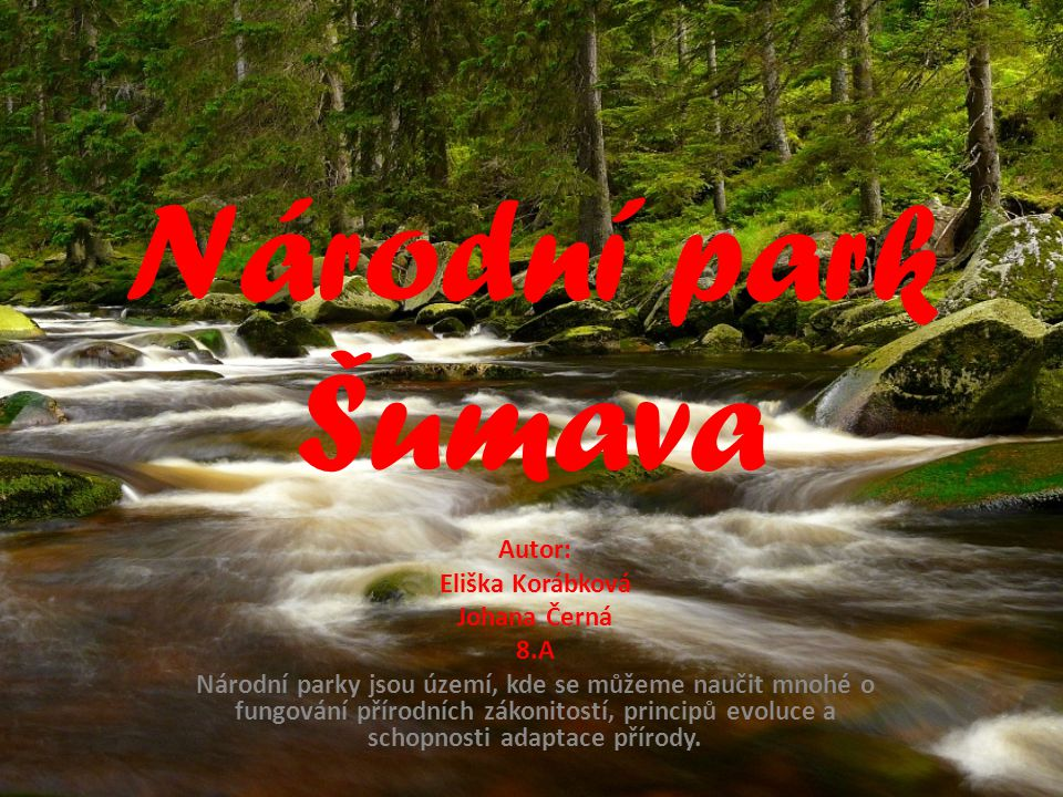 Národní park Šumava Autor: Eliška Korábková Johana Černá 8.A