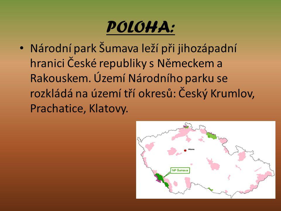 POLOHA: