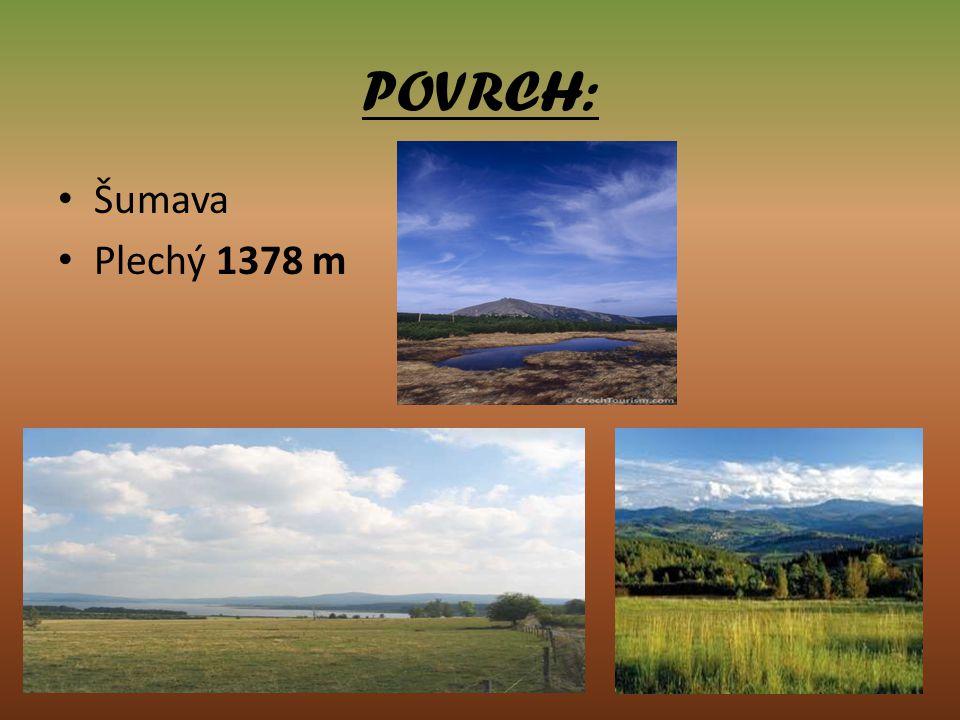 POVRCH: Šumava Plechý 1378 m