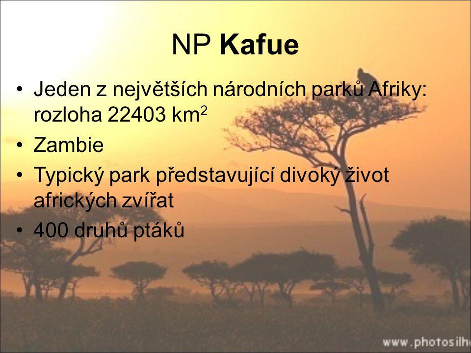 NP Kafue Jeden z největších národních parků Afriky: rozloha 22403 km2