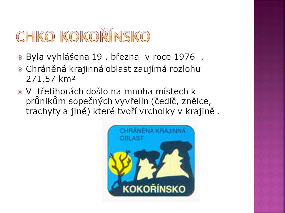 CHKO KOKOŘÍNSKO Byla vyhlášena 19 . března v roce 1976 .