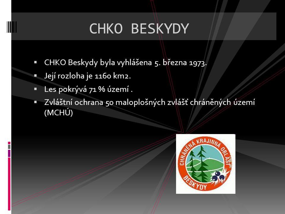 CHKO BESKYDY CHKO Beskydy byla vyhlášena 5. března 1973.