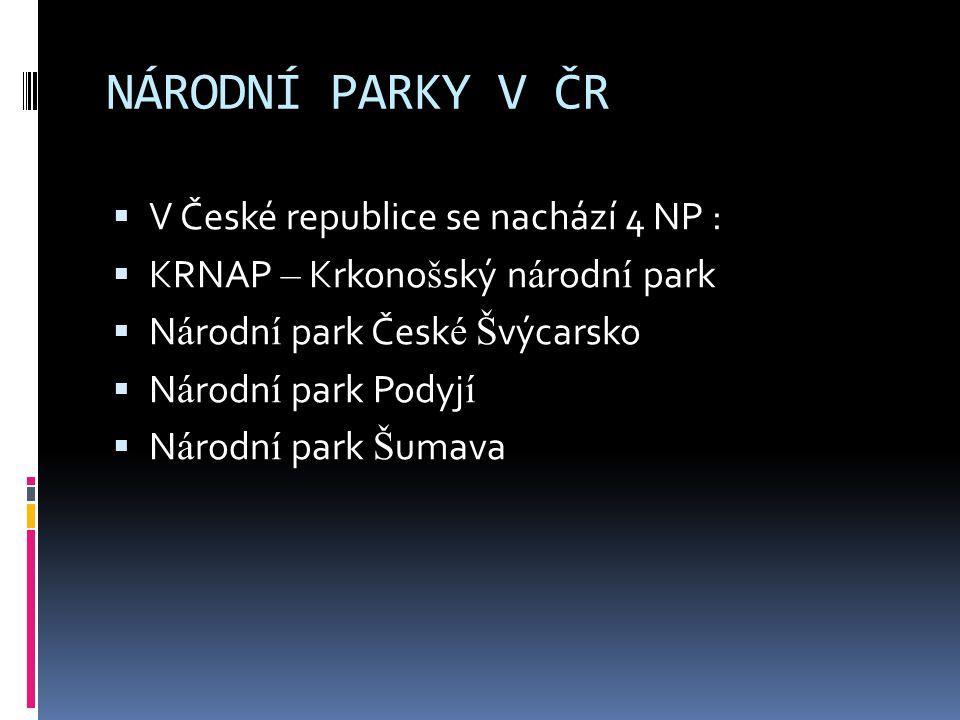 NÁRODNÍ PARKY V ČR V České republice se nachází 4 NP :