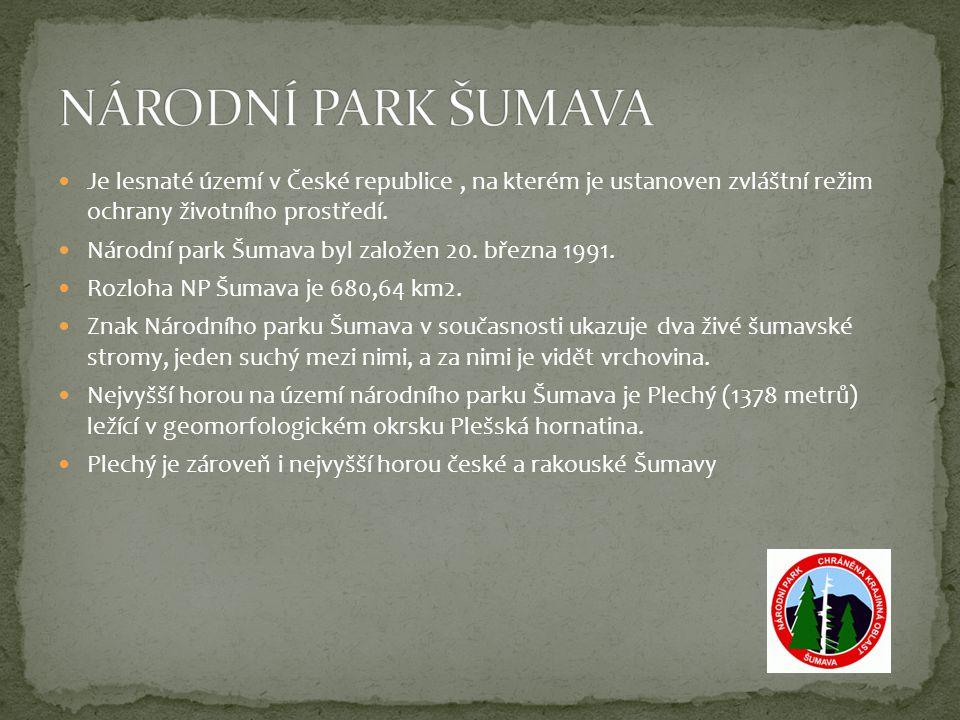 NÁRODNÍ PARK ŠUMAVA Je lesnaté území v České republice , na kterém je ustanoven zvláštní režim ochrany životního prostředí.