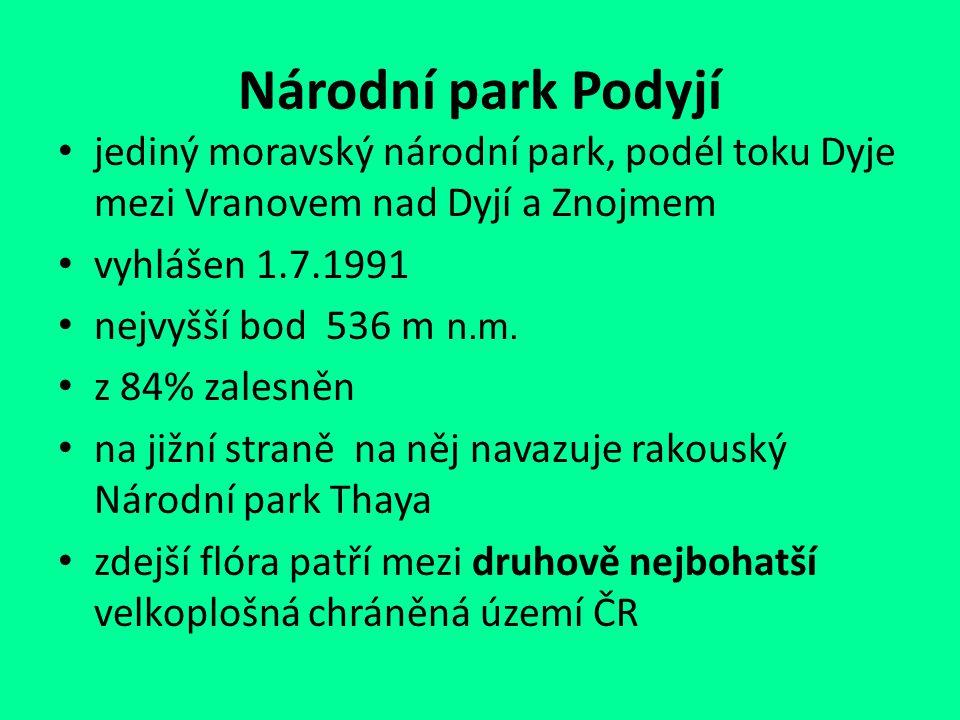 Národní park Podyjí jediný moravský národní park, podél toku Dyje mezi Vranovem nad Dyjí a Znojmem.