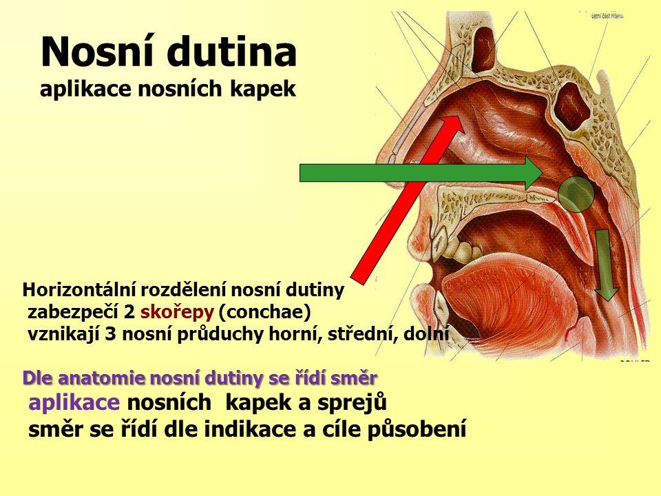 Nosní dutina aplikace nosních kapek