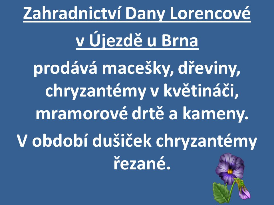 Zahradnictví Dany Lorencové v Újezdě u Brna prodává macešky, dřeviny, chryzantémy v květináči, mramorové drtě a kameny.