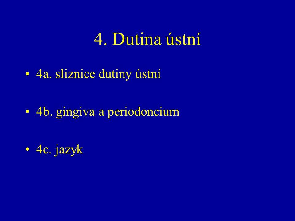 4. Dutina ústní 4a. sliznice dutiny ústní 4b. gingiva a periodoncium