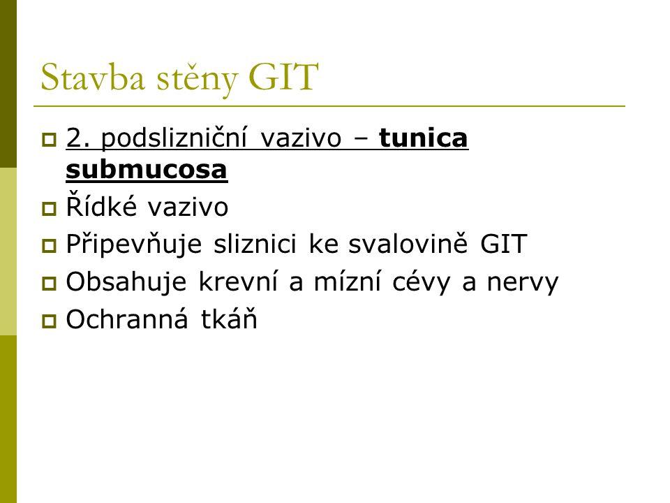 Stavba stěny GIT 2. podslizniční vazivo – tunica submucosa