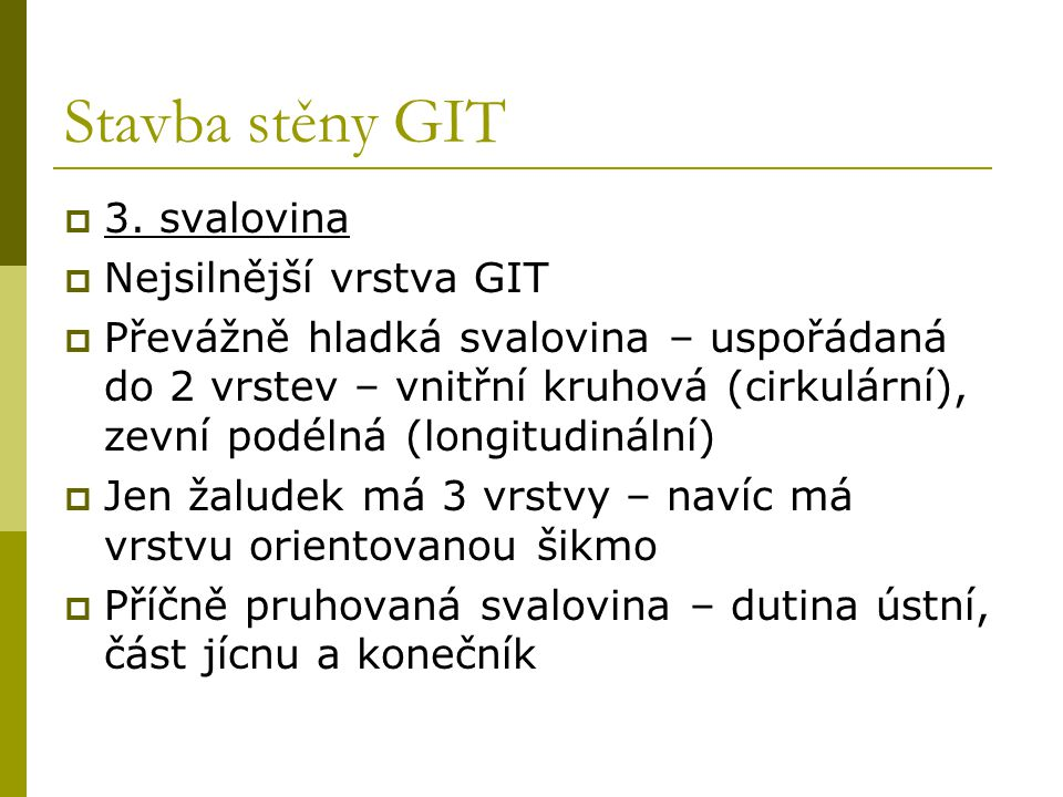 Stavba stěny GIT 3. svalovina Nejsilnější vrstva GIT