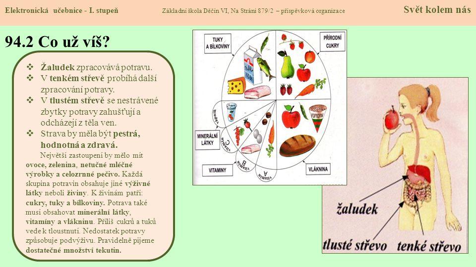 94.2 Co už víš Žaludek zpracovává potravu.