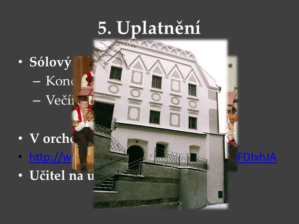 5. Uplatnění Sólový flétnista Koncerty Večírky V orchestru