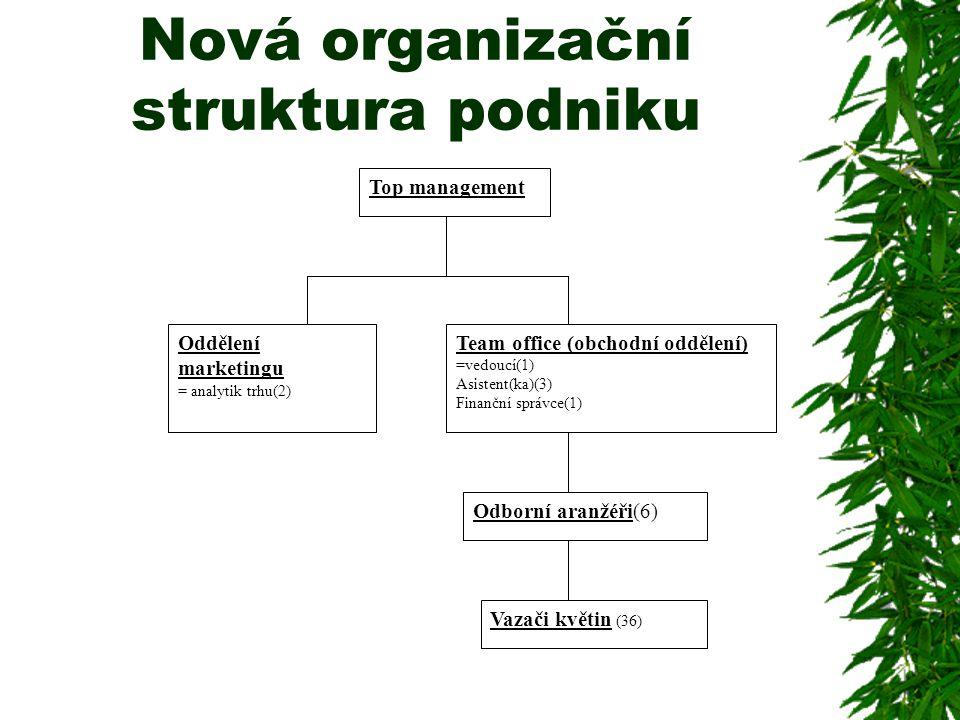 Nová organizační struktura podniku