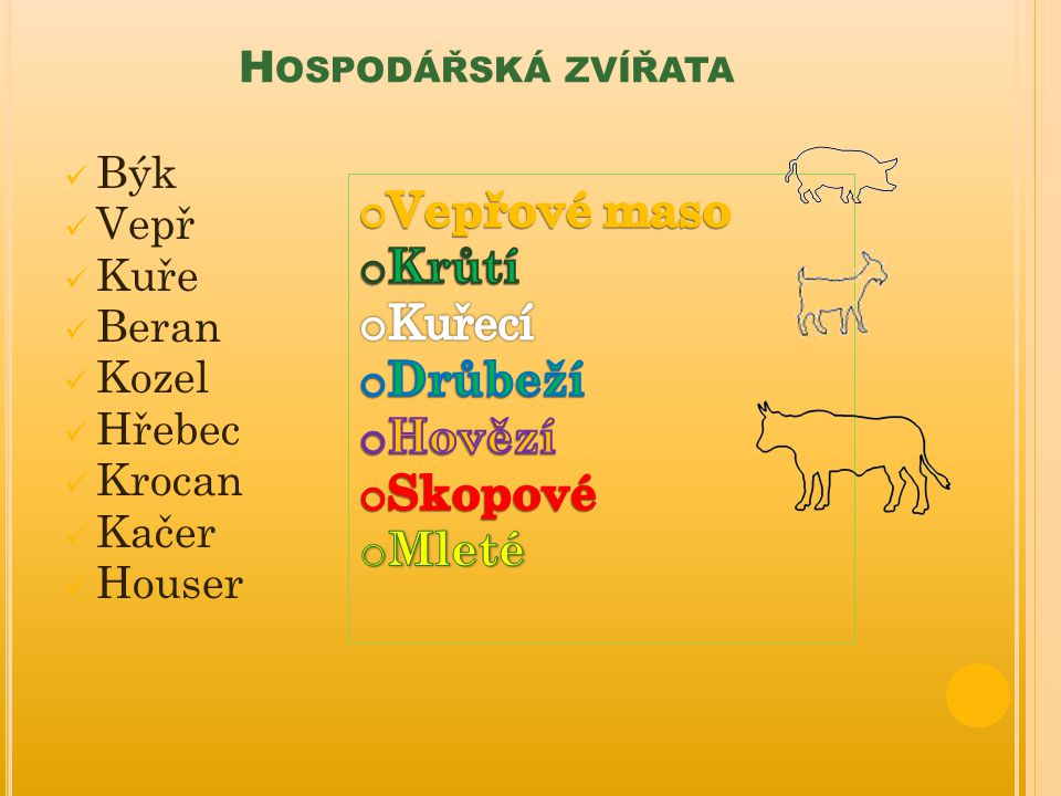 Vepřové maso Krůtí Kuřecí Drůbeží Hovězí Skopové Mleté