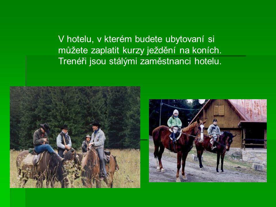 V hotelu, v kterém budete ubytovaní si můžete zaplatit kurzy ježdění na koních.