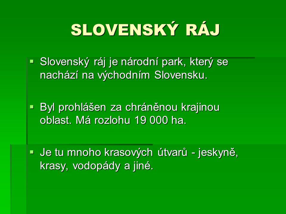 SLOVENSKÝ RÁJ Slovenský ráj je národní park, který se nachází na východním Slovensku.